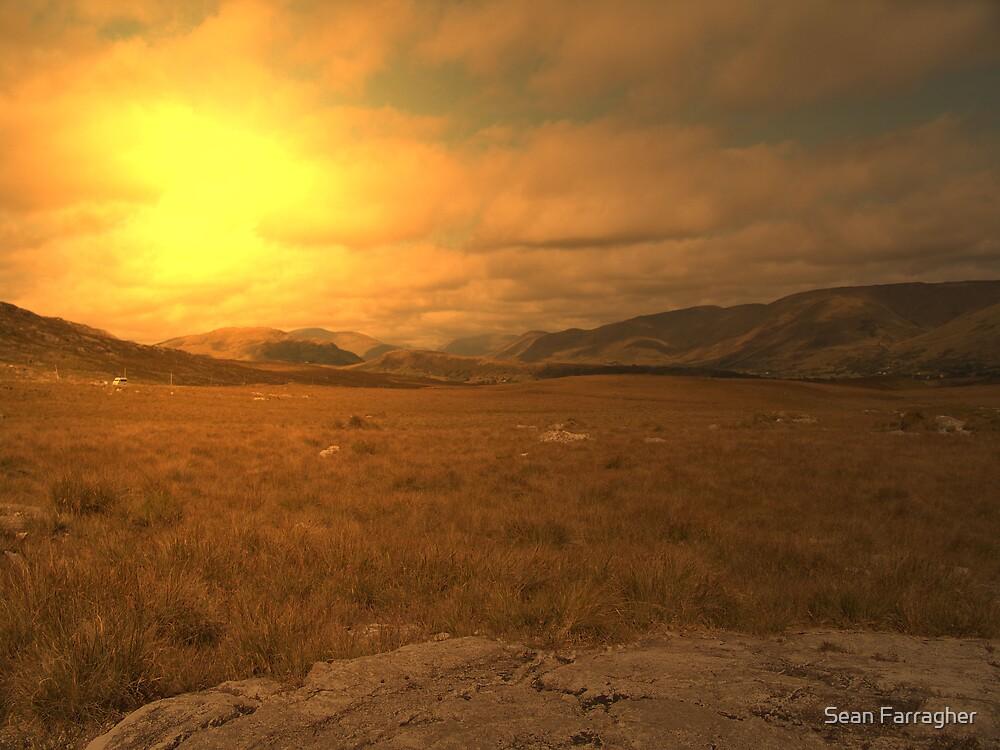 landscape  by Sean Farragher