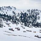 Snowy Village by Svetlana Sewell