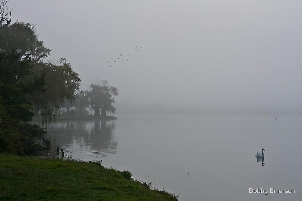 Foggy Swan by Bobby Emerson