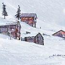 Snow Fall by Svetlana Sewell