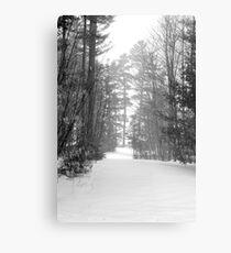 snow scene a Metal Print