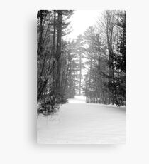 snow scene a Canvas Print