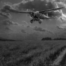 RAF Lysander on secret operation, B&W version by Gary Eason