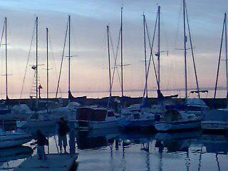 yachts at dusk by carolynb