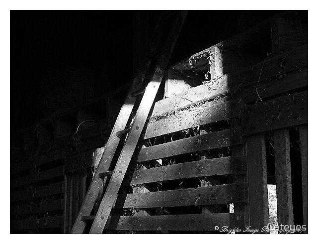 Ladder To Hayloft by Cateyes