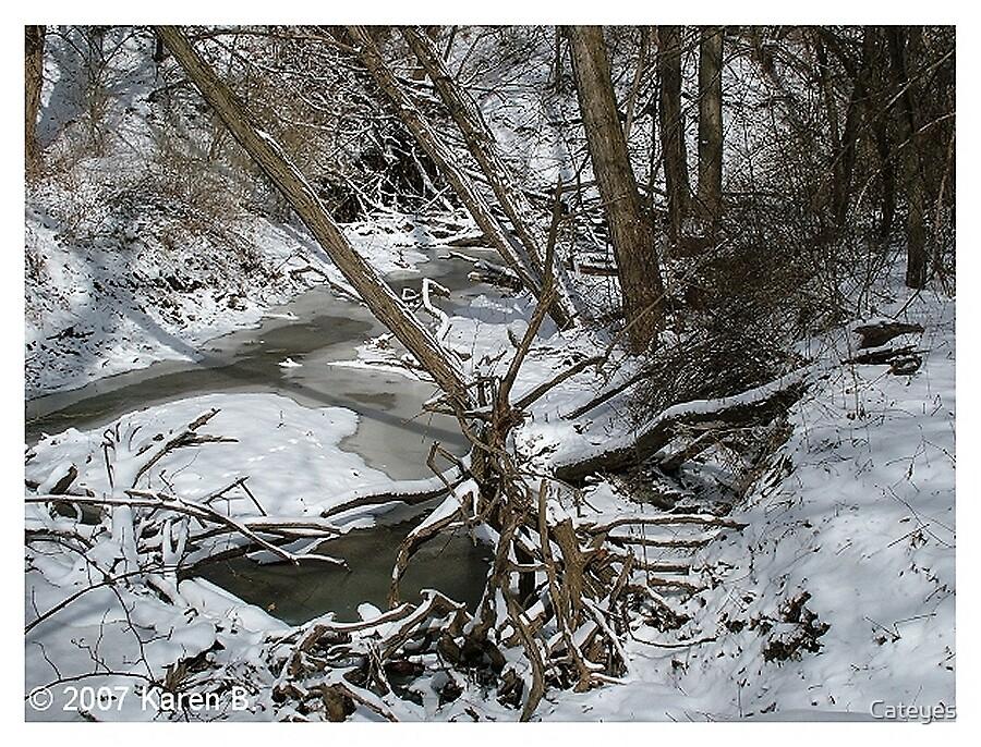 WinterScape by Cateyes