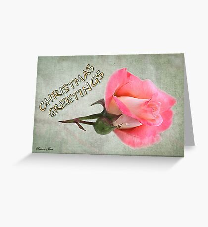 Christmas Greetings ~ A Rose Greeting Card