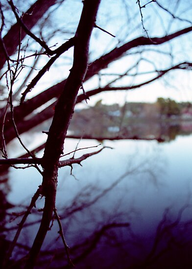 Lake Daylesford by Lisa Bow