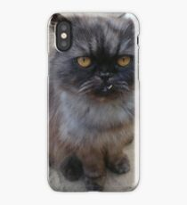 Goofy Cat iPhone Case/Skin