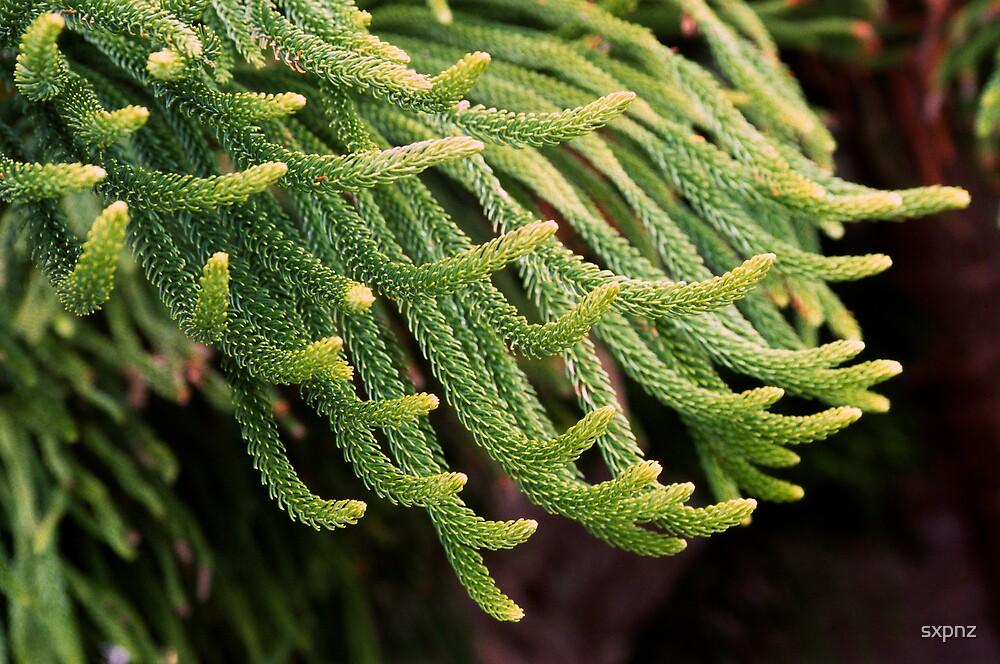 Green fingers by sxpnz