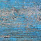 Blue wood  by Boxzero