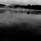 Solitude by Ashley Ng