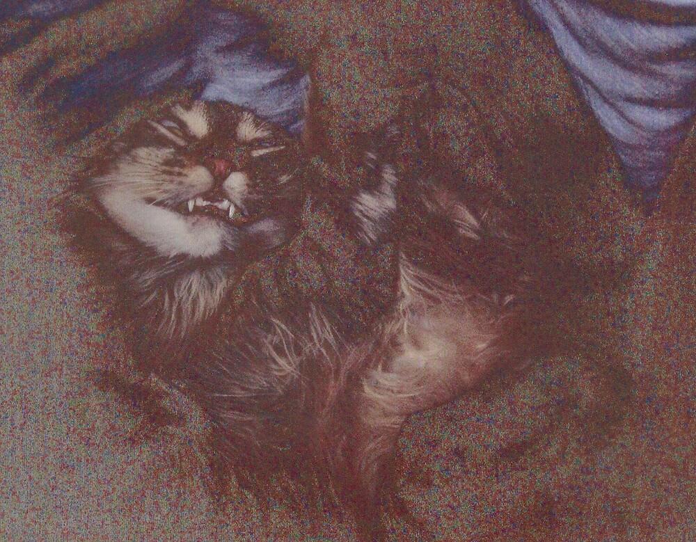 cat nap by ray65