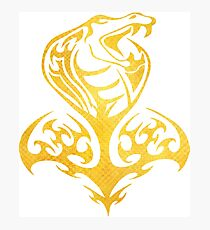 Snake Guild Photographic Print