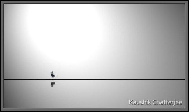 The Bird 1 by Kaushik Chatterjee