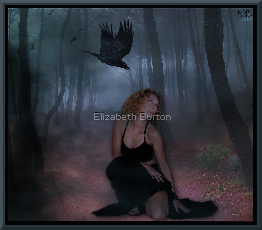 Ravens Path by Elizabeth Burton