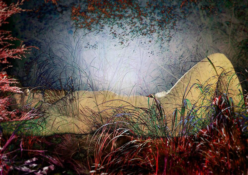 the enchantress by alistair mcbride