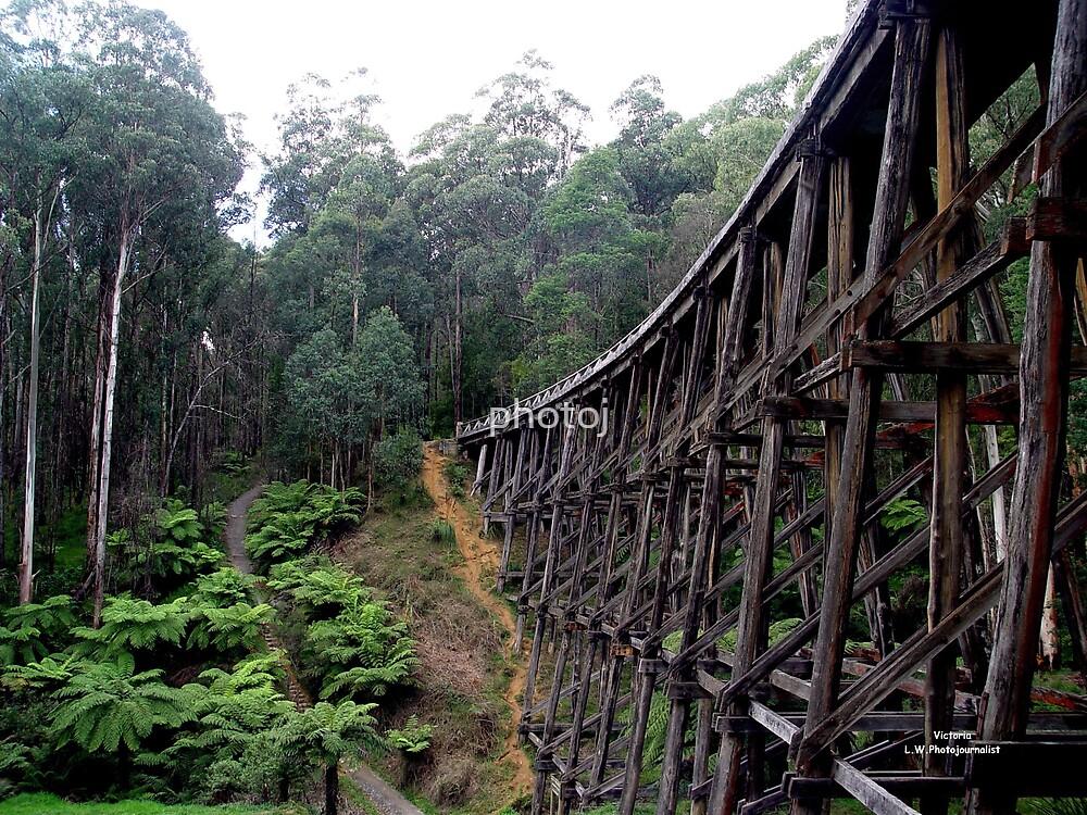 Australia Victoria, Old Steam Train Bridge by photoj