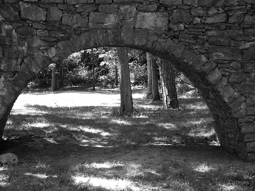 Stone Archway by Cateyes