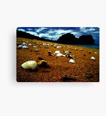 she sells sea shells on the sea shore Canvas Print