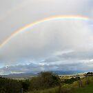 Rainbow by TheaShutterbug