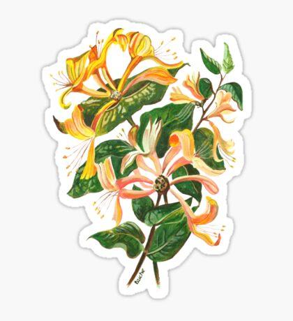 Honeysuckle Bouquet Sticker
