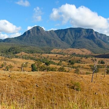 Cunninghams Gap by Mowog