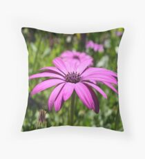 Side View Of A Purple Osteospermum With Garden Background Throw Pillow