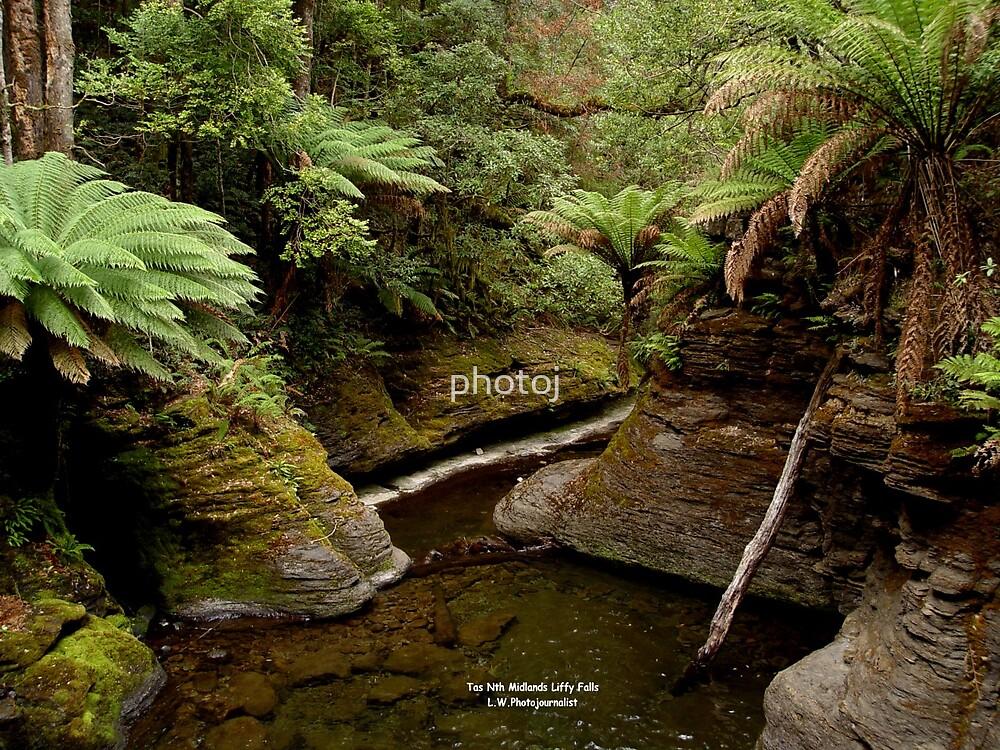 photoj Tasmania Liffy Falls by photoj