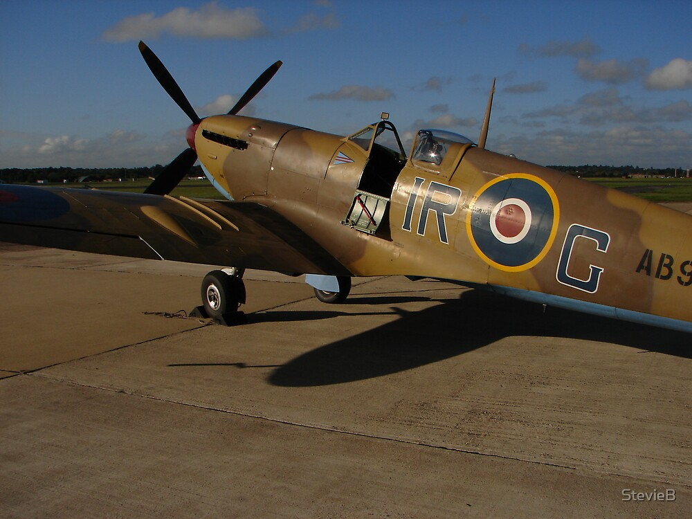 Spitfire by StevieB