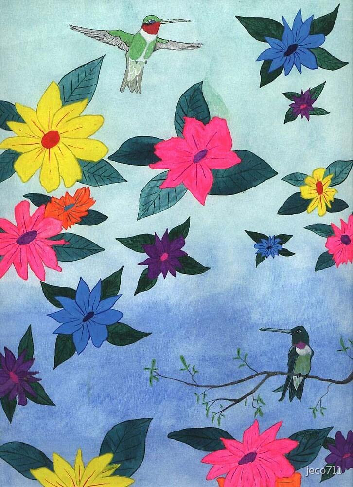 Hummingbirds by jeco711