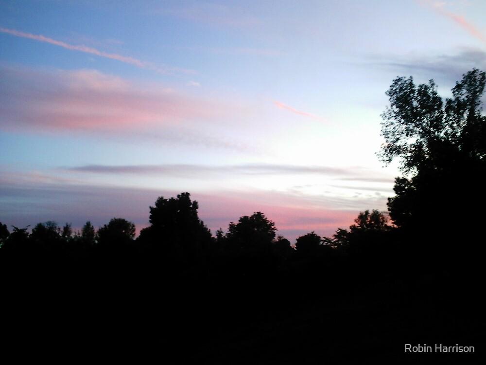 splender in the sky by Robin Harrison