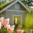 Pretty Pink Flowers by Marilyn Cornwell
