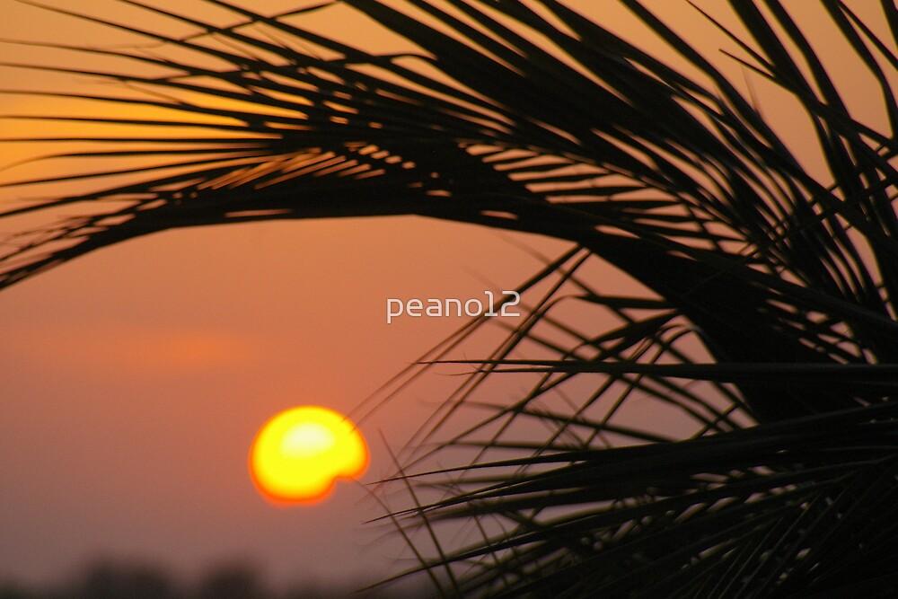 Key West sunset by peano12