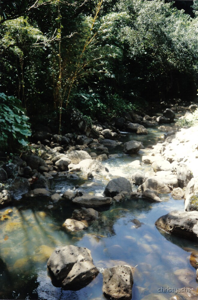 Shady Creek by christyashe