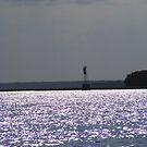 evening sun on water by wanda blake