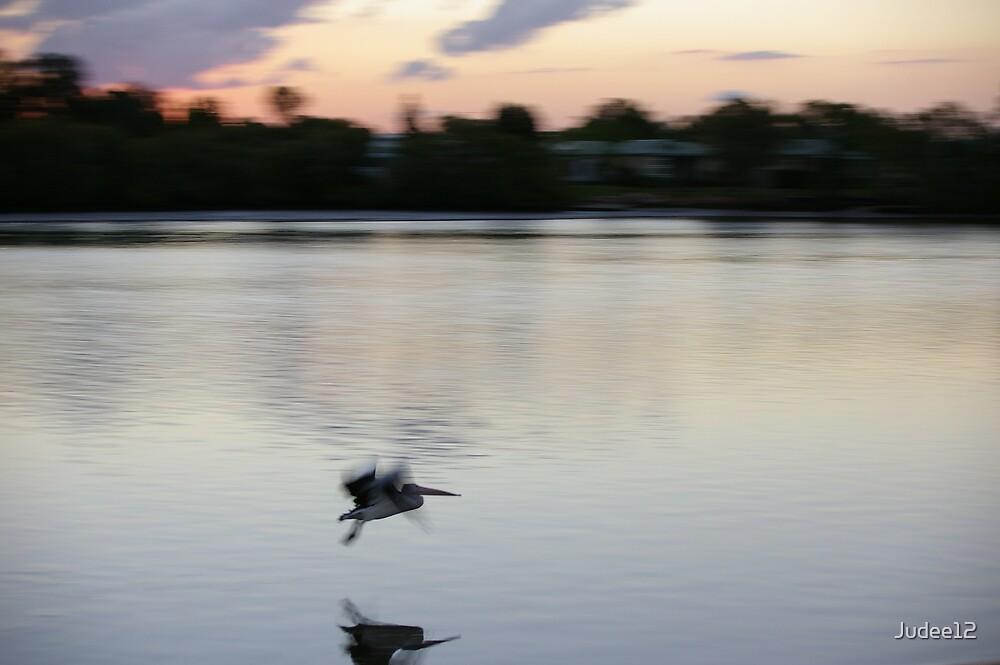 Flying Pelican by Judee12