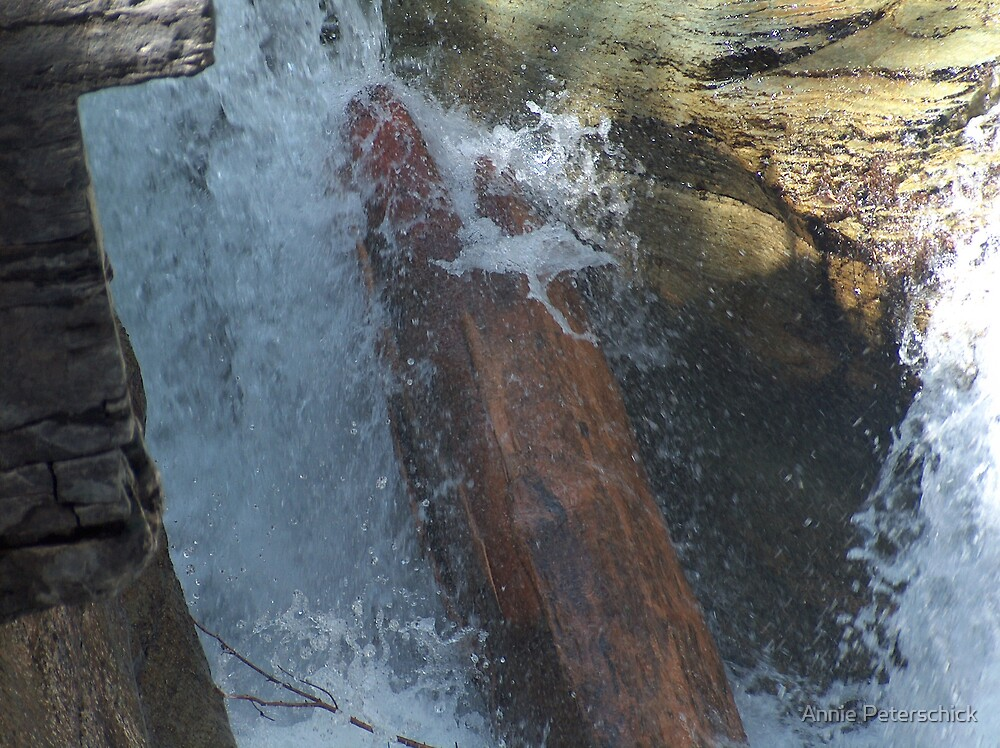 Gorge Water Fall 10 by Annie Peterschick