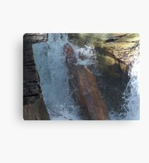 Gorge Water Fall 10 Canvas Print