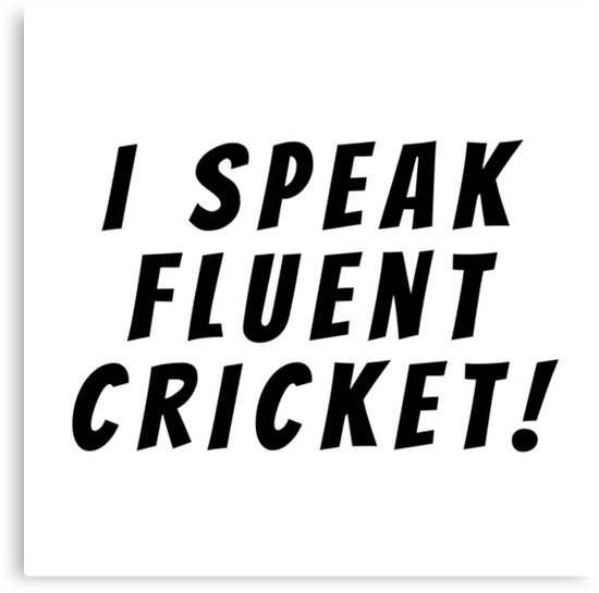 i speak fluent cricket by MallsD