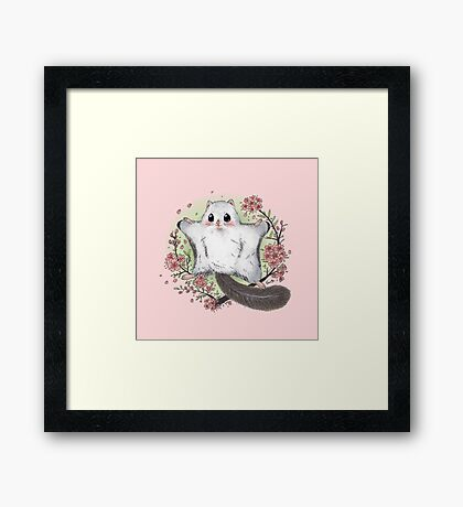 Flying Squirrel with Cherry Blossom Framed Print