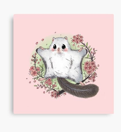 Flying Squirrel with Cherry Blossom Canvas Print