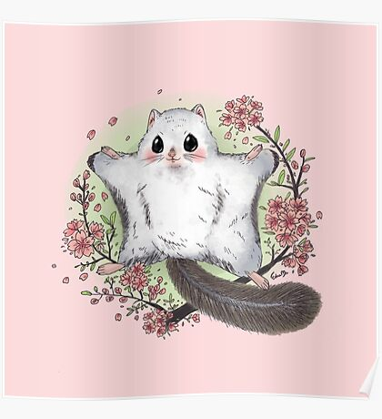 Flying Squirrel with Cherry Blossom Poster