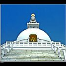 The World Peace Pagoda In Lumbini by Lalit  Bhusal