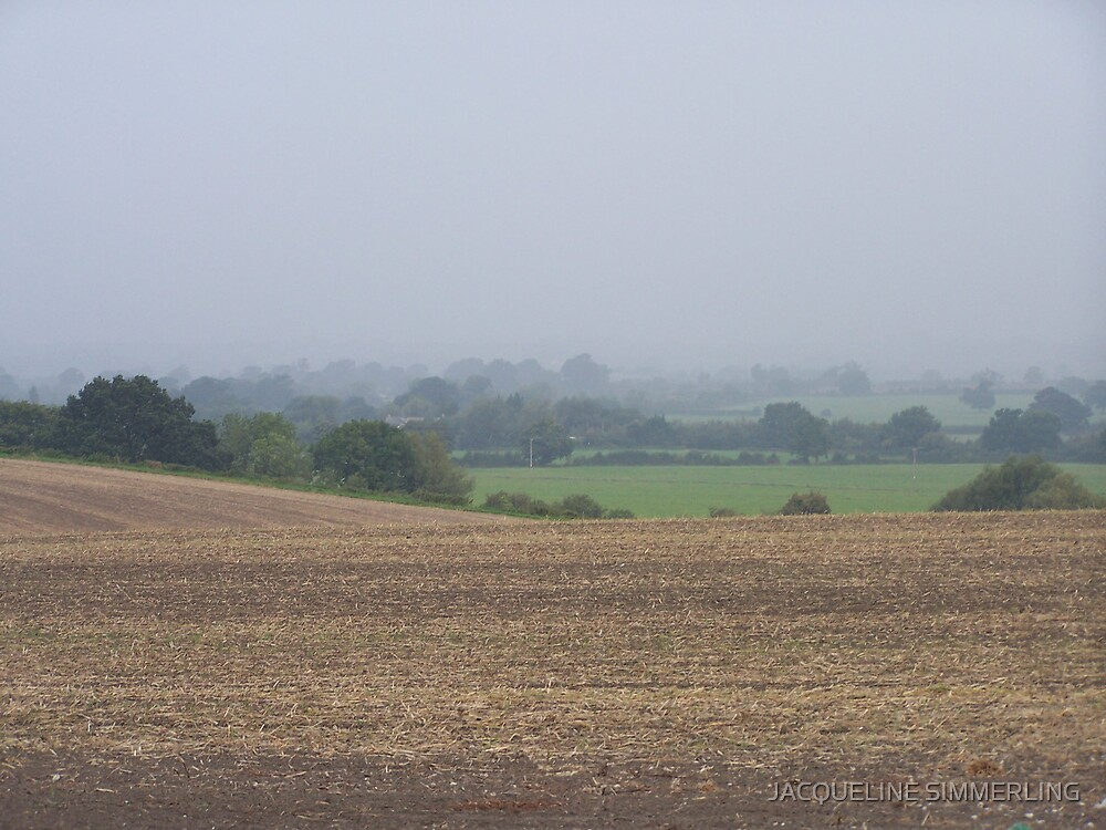 misty morning by JACQUELINE SIMMERLING