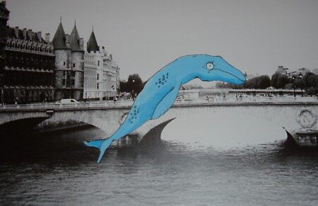 French Freshwater doesn't work by Chad  Schuety