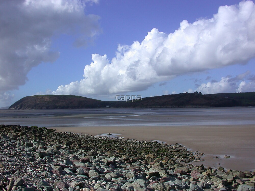 River Towy Estuary by cappa