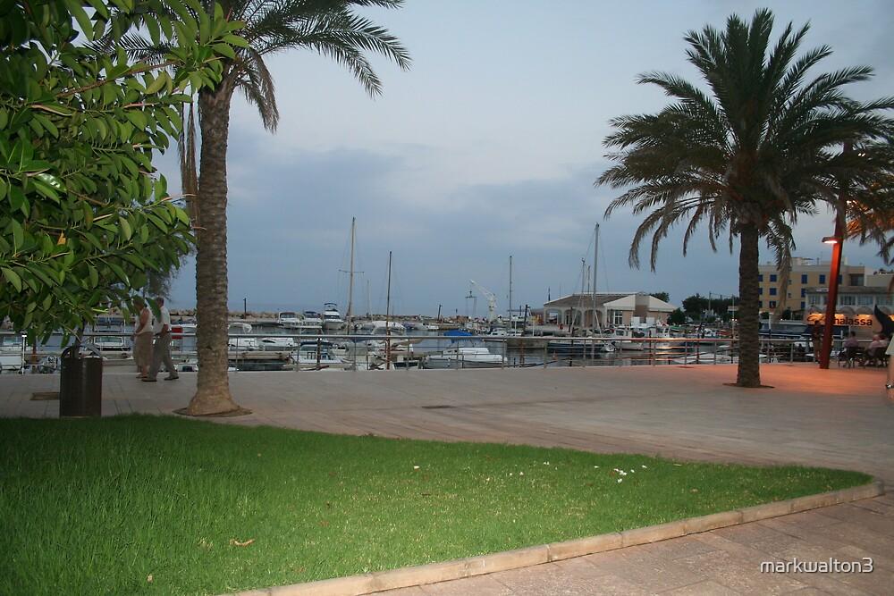 Cala Bona Harbour by markwalton3