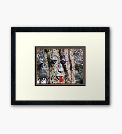 Trees Dream Framed Print