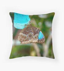 African Butterfly Throw Pillow